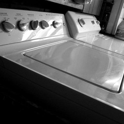 SampleOddity Epic Laundry