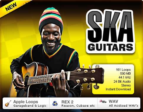 platinum loops ska guitars a collection of ska reggae guitar loops. Black Bedroom Furniture Sets. Home Design Ideas