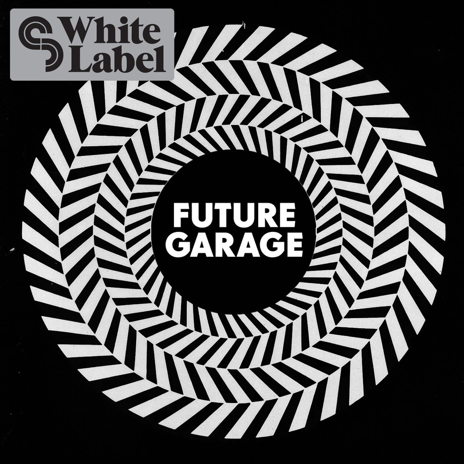 Sample magic future garage sample pack for Future garage sample pack