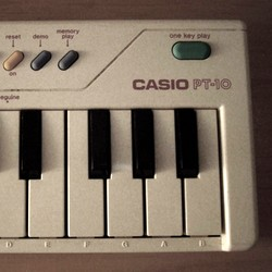 Seaweed Factory Casio PT-10