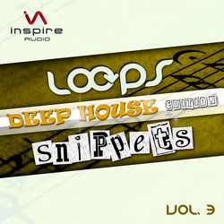 Loops & Snippets Vol 3 Deep House Edition