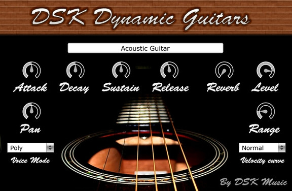 DSK Dynamic Guitars