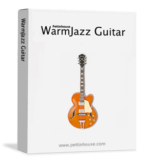 pettinhouse warmjazz guitar a hollow body electric guitar sample library for kontakt. Black Bedroom Furniture Sets. Home Design Ideas