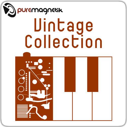 Puremagnetik Circuit 30 for Ableton Live