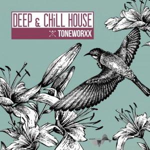 Toneworxx Deep & Chill House