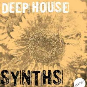Raw Loops Deep House Synths