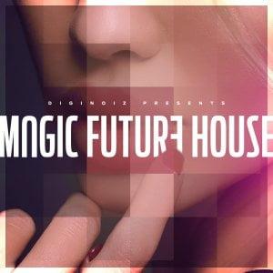 Diginoiz Magic Future House