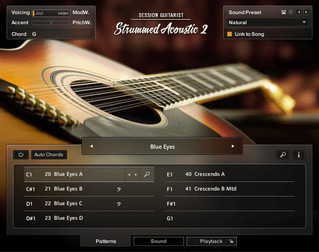 NI SESSION GUITARIST Strummed Acoustic 2 TwelveString Main