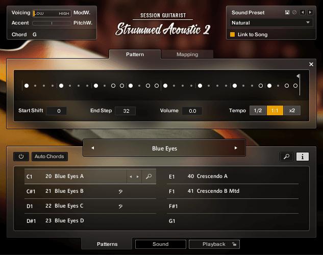 NI SESSION GUITARIST Strummed Acoustic 2 TwelveString Pattern
