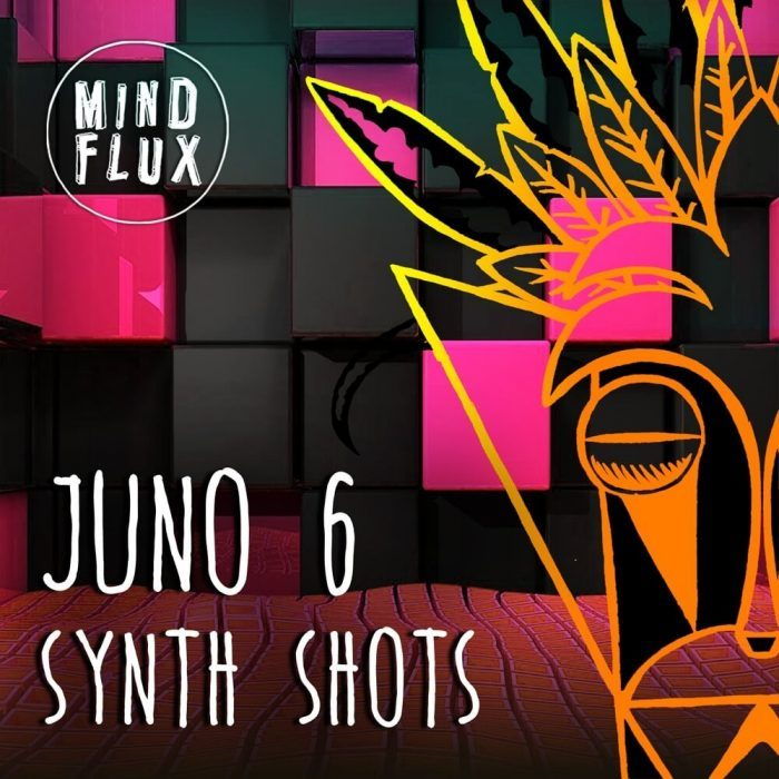 Mind Flux Juno 6 Synth Shots