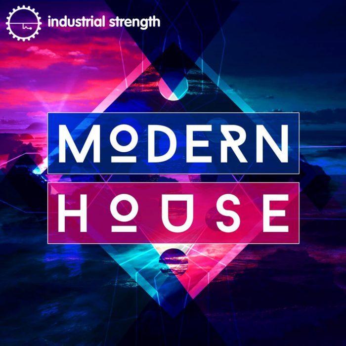 Industrial Strength Samples Modern House