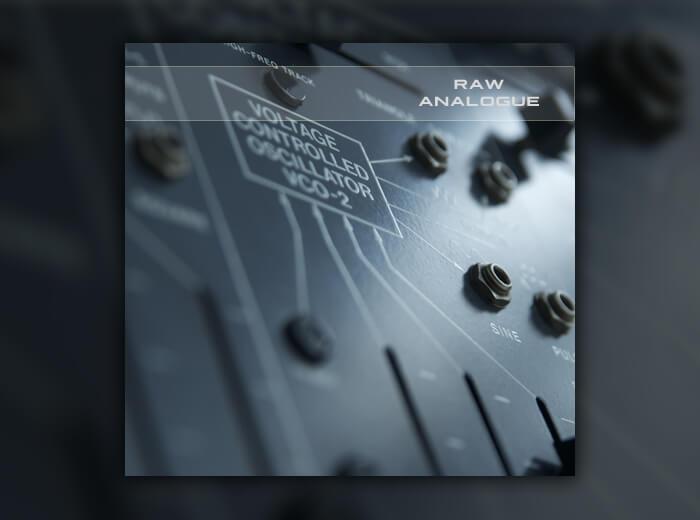 Soundsdivine Raw Analogue