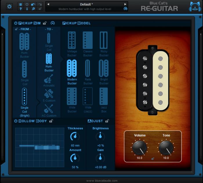 Blue Cat's Re Guitar