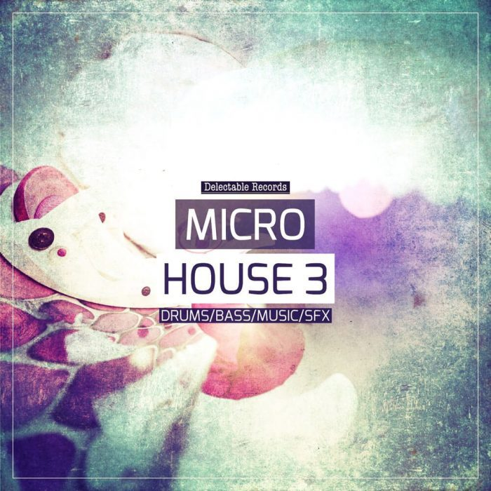 Delectable Records Micro House 3