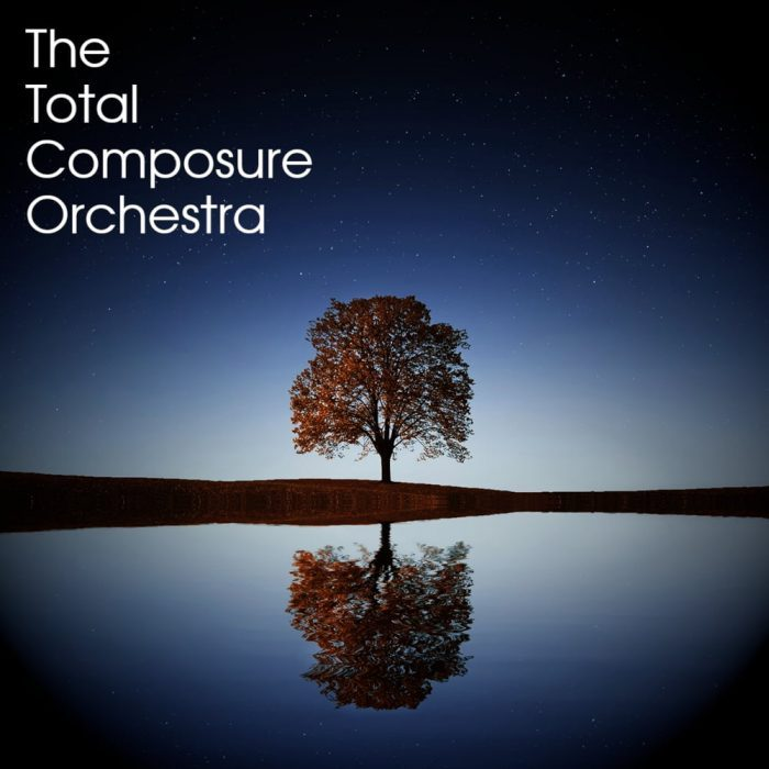 The Total Composure Orchestra Kontakt 5 Instruments Free