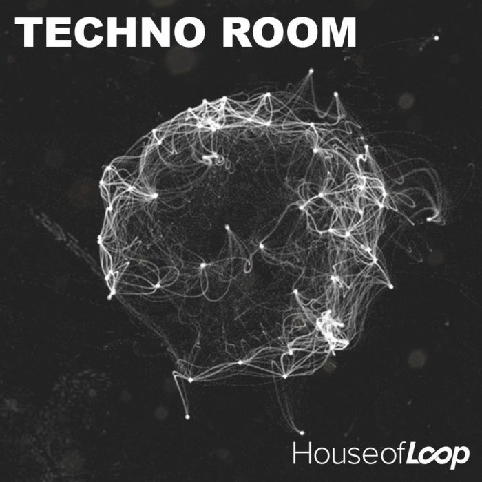 House of Loop Techno Room