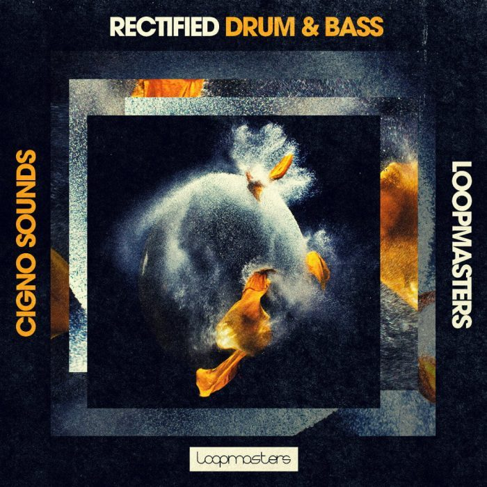 Loopmasters Cigno Sounds Rectified Drum & Bass