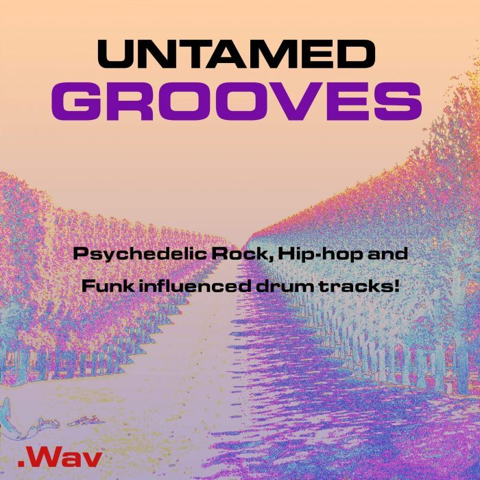 Past To Future Samples Untamed Grooves