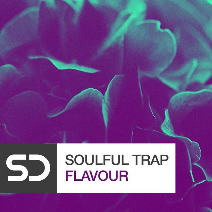Sample Diggers Soulful Trap Flavour