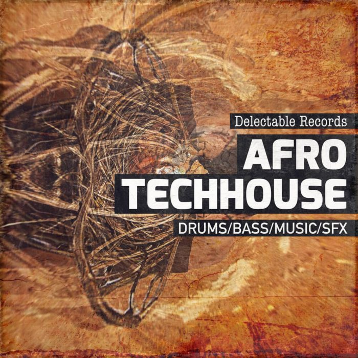 Delectable Records Afro TechHouse 01