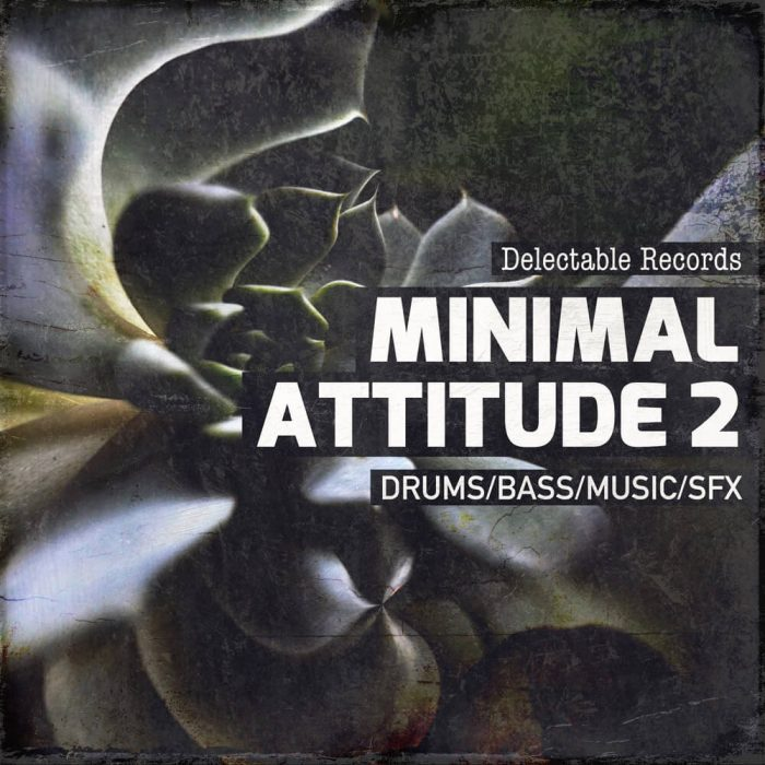 Delectable Records Minimal Attitude 2