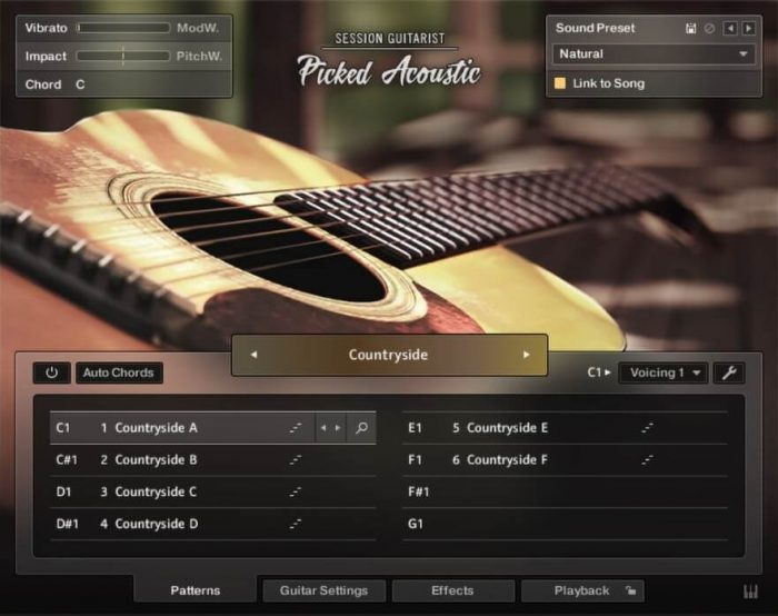 NI Session Guitarist Picked Acoustic GUI