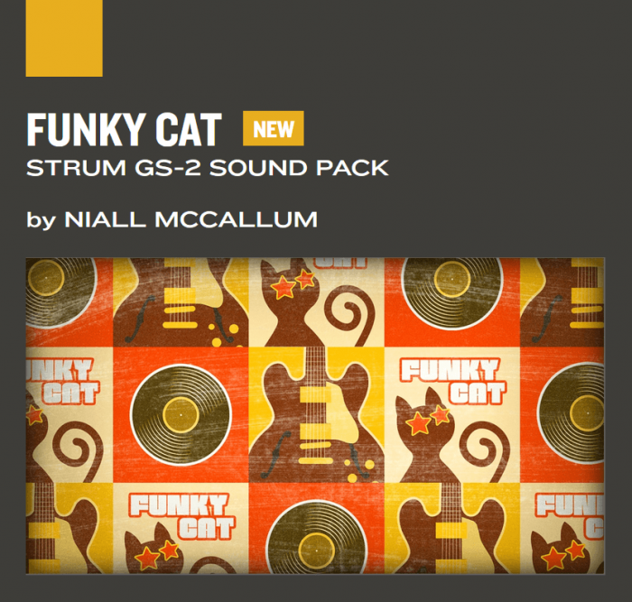 AAS Funky Cat for Strum GS 2