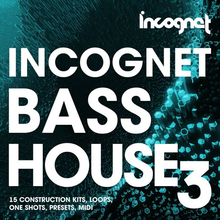 Incognet Bass House 3