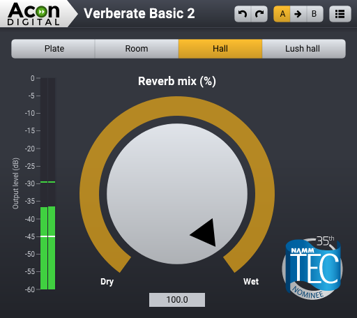 Acon Digital Verberate Basic 2