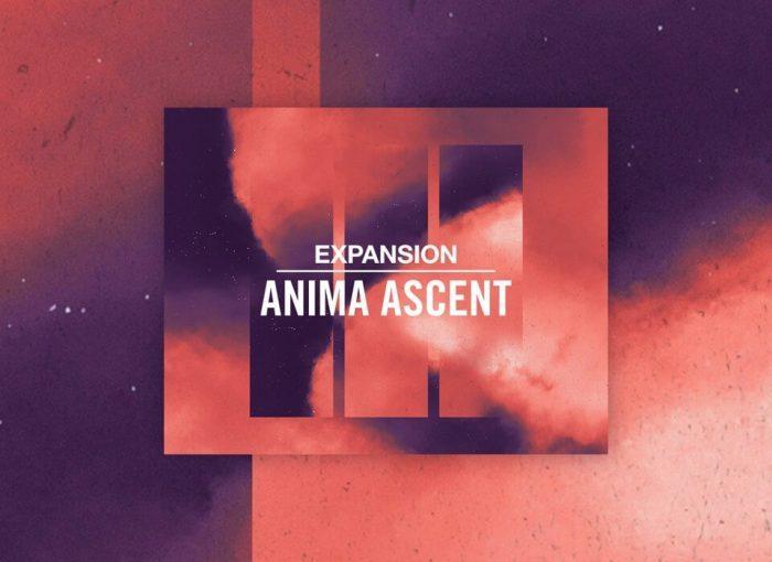 NI Anima Ascent