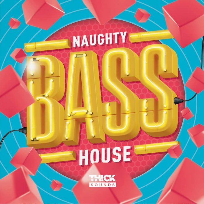 Thick Sounds Naughty Bass House